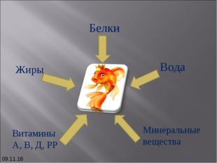 Белки Жиры Вода Минеральные вещества Витамины А, В, Д, РР *