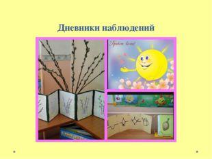 Дневники наблюдений