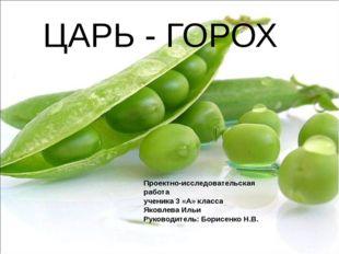 ЦАРЬ - ГОРОХ Проектно-исследовательская работа ученика 3 «А» класса Яковлева