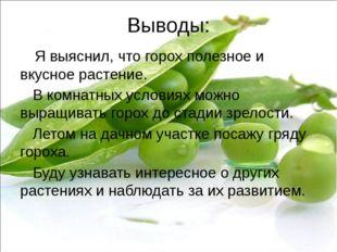 Выводы: Я выяснил, что горох полезное и вкусное растение. В комнатных условия