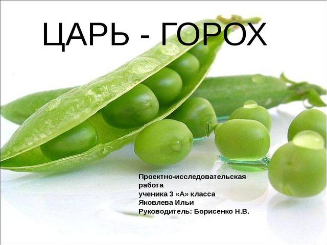 ЦАРЬ - ГОРОХ Проектно-исследовательская работа ученика 3 «А» класса Яковлева...