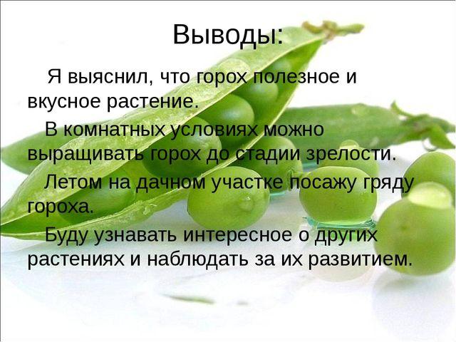 Выводы: Я выяснил, что горох полезное и вкусное растение. В комнатных условия...