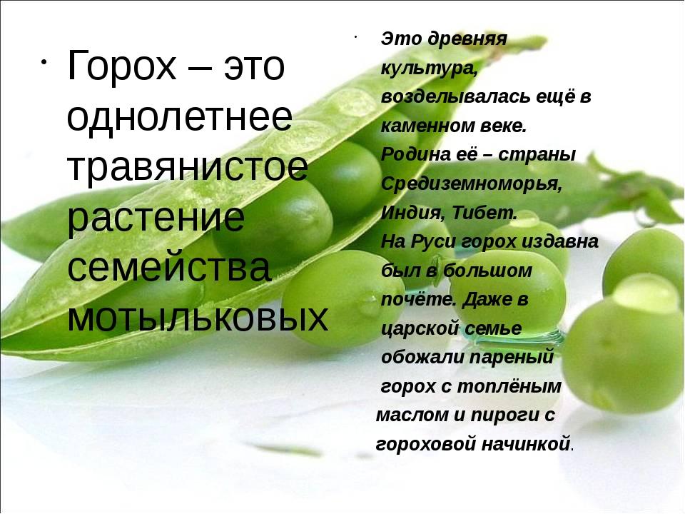 Горох – это однолетнее травянистое растение семейства мотыльковых Это древняя...