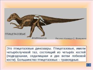 Это птицетазовые динозавры. Птицетазовые, имели четырёхлучевой таз, состоящий