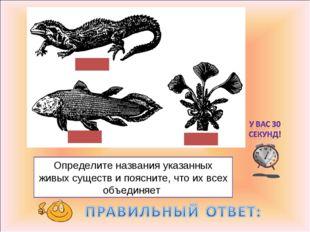 Определите названия указанных живых существ и поясните, что их всех объединяет