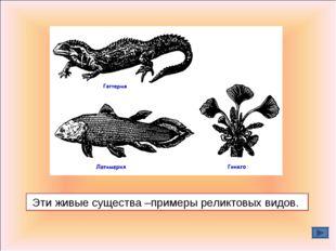 Эти живые существа –примеры реликтовых видов.