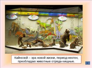 Кайнозой – эра новой жизни, период-неоген, преобладаю животные отряда-хищные.