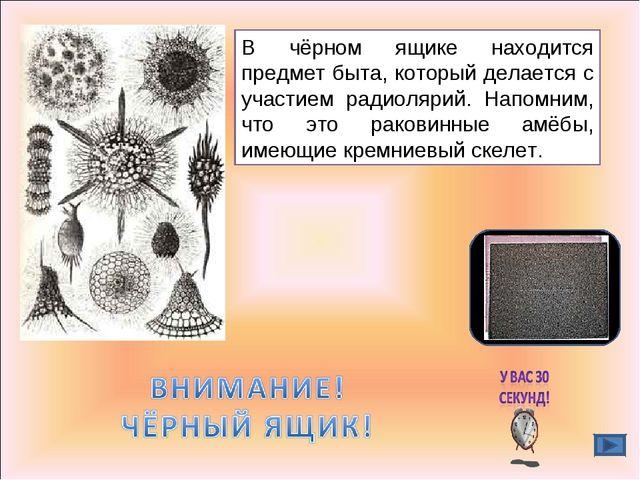 В чёрном ящике находится предмет быта, который делается с участием радиолярий...