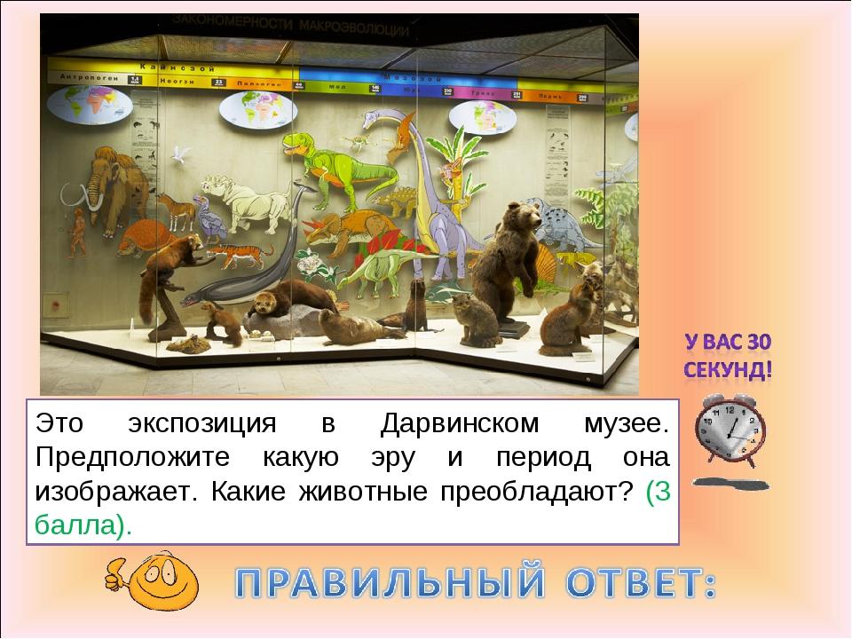 Это экспозиция в Дарвинском музее. Предположите какую эру и период она изобра...