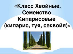Презентацию на тему кипарис
