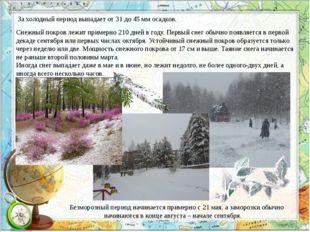 За холодный период выпадает от 31 до 45 мм осадков. Снежный покров лежит прим