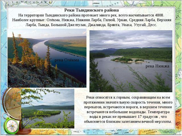 Реки Тындинского района На территории Тындинского района протекает много рек,...