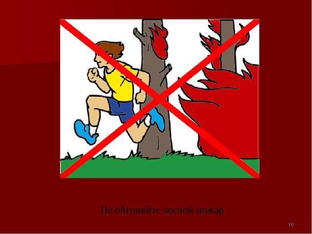 Не обгоняйте лесной пожар *