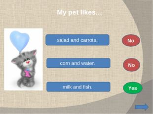 My pet likes… salad and carrots. corn and water. milk and fish. No No Yes
