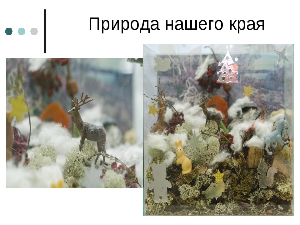 Природа нашего края