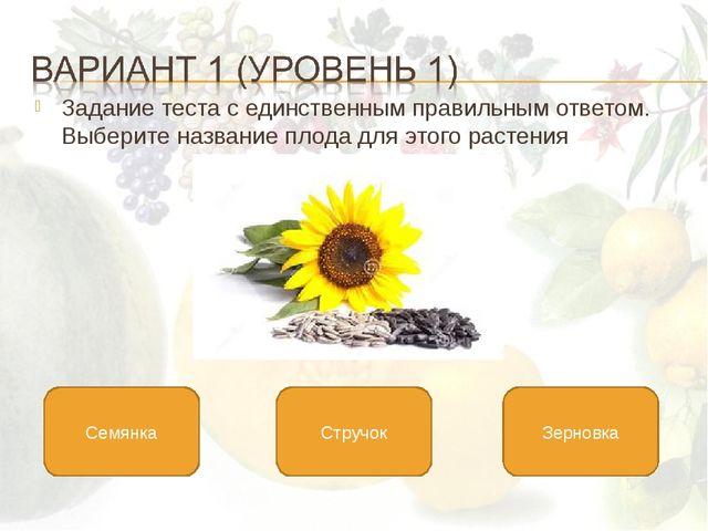 Задание теста с единственным правильным ответом. Выберите название плода для...