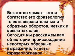 Богатство языка – это и богатство его фразеологии, то есть выразительных и об