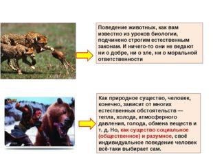 Поведение животных, как вам известно из уроков биологии, подчинено строгим ес