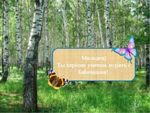 Молодец! Ты хорошо умеешь играть с бабочками!