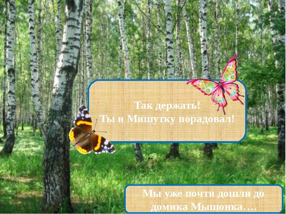 Так держать! Ты и Мишутку порадовал! Мы уже почти дошли до домика Мышонка….