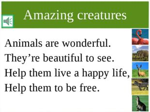Amazing creatures Animals are wonderful. They're beautiful to see. Help them
