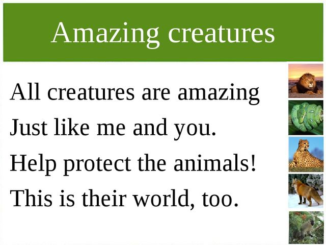Amazing creatures All creatures are amazing Just like me and you. Help protec...