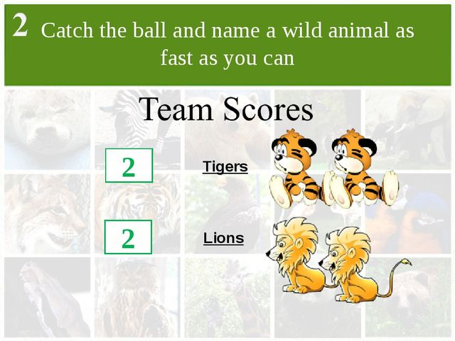 Catch the ball and name a wild animal as fast as you can Lions Tigers 2 2