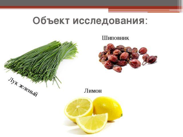 Объект исследования: Лук зеленый Лимон Шиповник