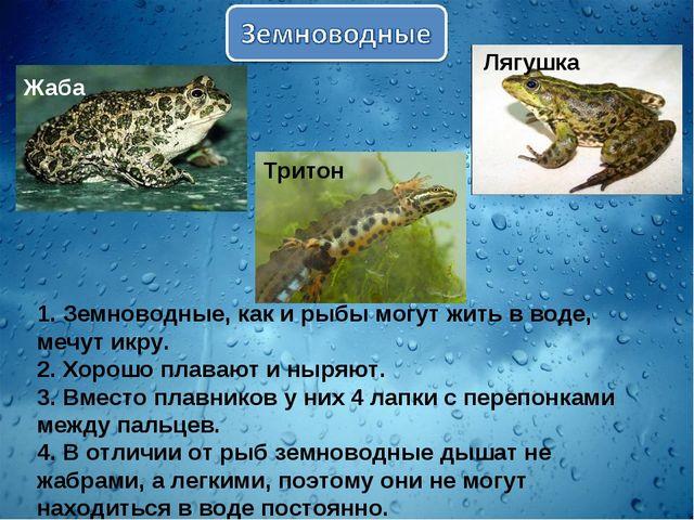 1. Земноводные, как и рыбы могут жить в воде, мечут икру. 2. Хорошо плавают и...