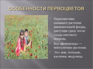 Первоцветами называют растения ранневесенней флоры, цветущие сразу после сход