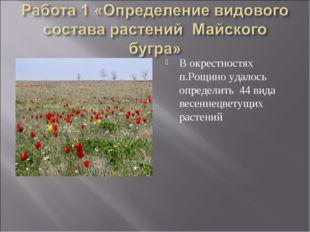 В окрестностях п.Рощино удалось определить 44 вида весеннецветущих растений