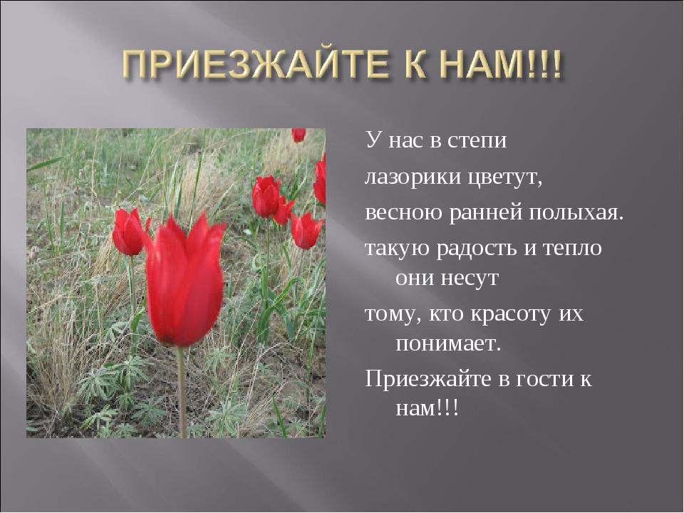 У нас в степи лазорики цветут, весною ранней полыхая. такую радость и тепло о...