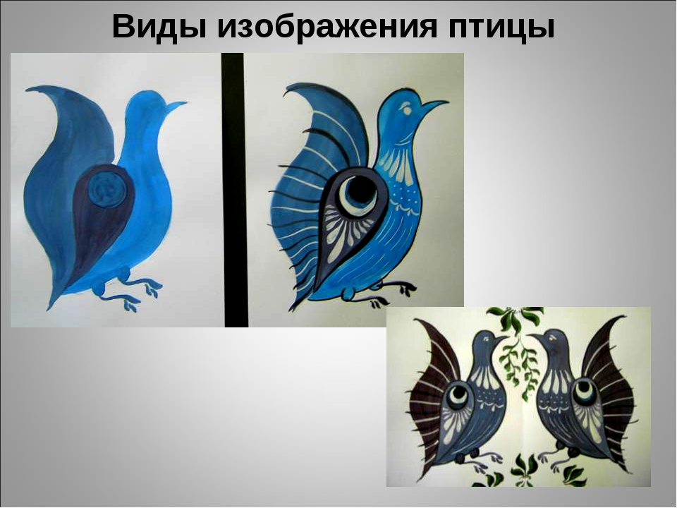 Виды изображения птицы