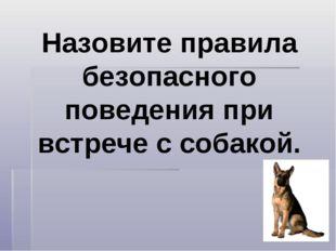 Назовите правила безопасного поведения при встрече с собакой.