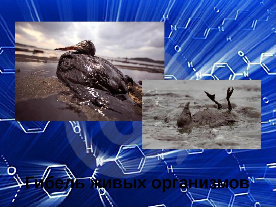 Гибель живых организмов