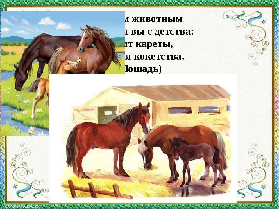 С этим животным Знакомы вы с детства: Возит кареты, Не зная кокетства. (Лошадь)