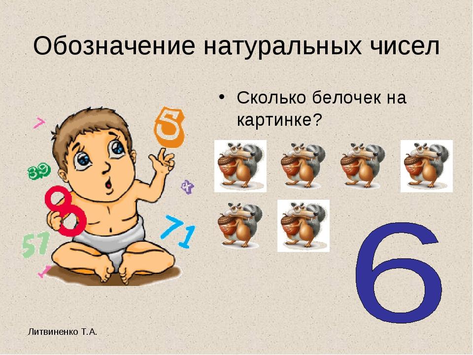 Литвиненко Т.А. Обозначение натуральных чисел Сколько белочек на картинке?