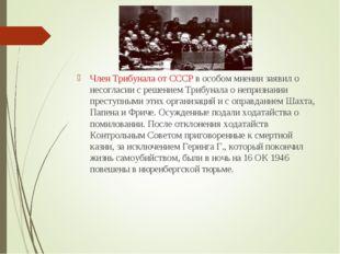 Член Трибунала от СССР в особом мнении заявил о несогласии с решением Трибуна