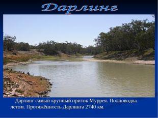 Дарлинг самый крупный приток Муррея. Полноводна летом. Протяжённость Дарлинг