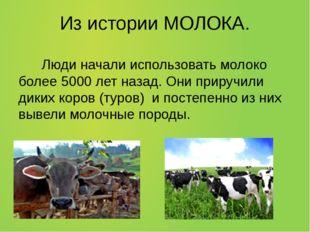 Из истории МОЛОКА. Люди начали использовать молоко более 5000 лет назад. Они