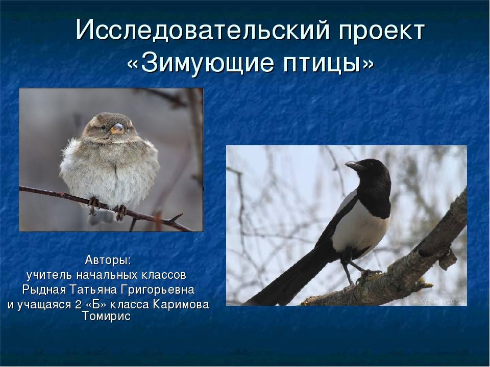 Исследовательский проект «Зимующие птицы» Авторы: учитель начальных классов Р...