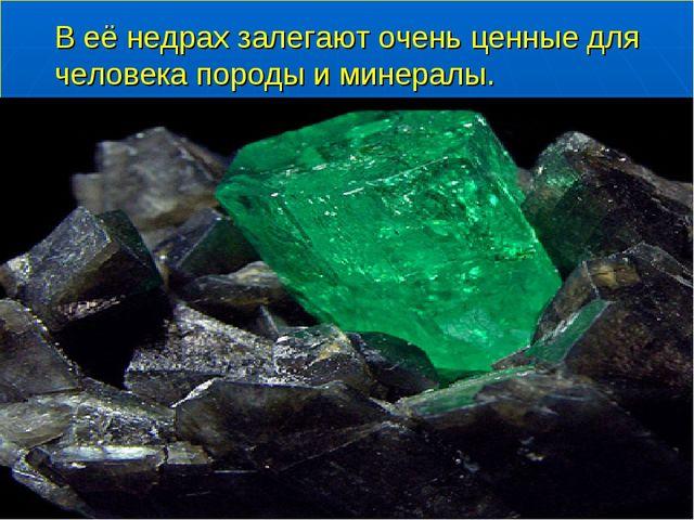 В её недрах залегают очень ценные для человека породы и минералы.