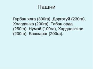 Пашни Гурбан ялга (300га), Дорготуй (230га), Холодянка (200га), Табан орда (2