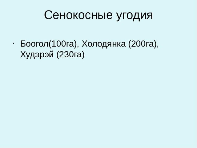 Сенокосные угодия Боогол(100га), Холодянка (200га), Худэрэй (230га)