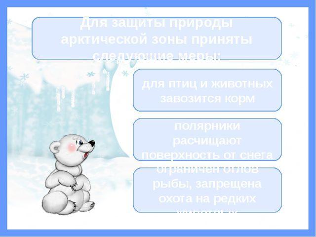 Информационные источники Авторский фон Прозрачная рамка Прозрачный сугроб Отр...