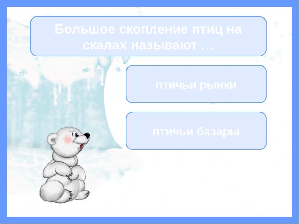 Фокина Лидия Петровна Образование: средне-специальное, Черепановское педагоги...