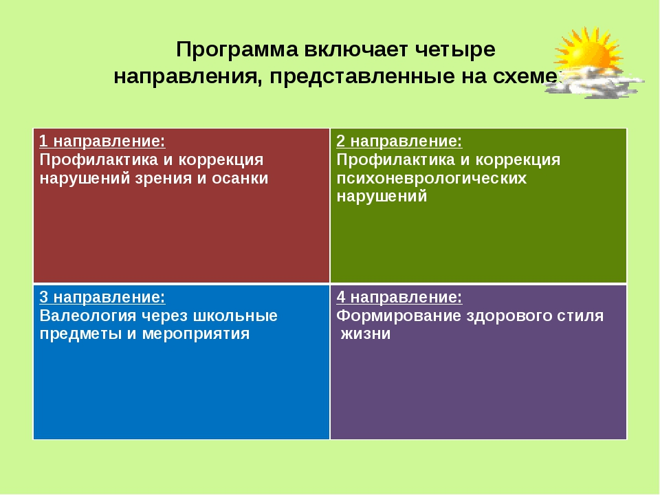 Программа включает четыре направления, представленные на схеме: 1 направление...