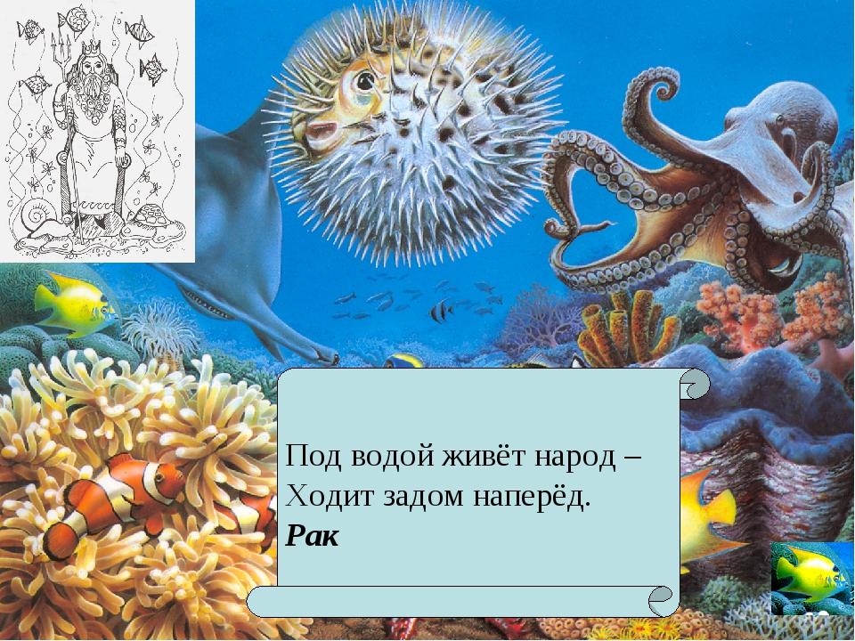 Под водой живёт народ – Ходит задом наперёд. Рак