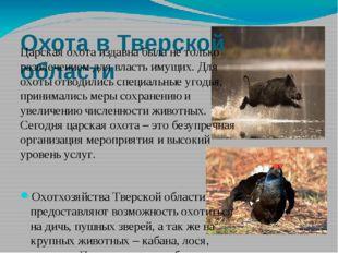 Охота в Тверской области Царская охота издавна была не только развлечением дл