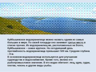 Куйбышевское водохранилище можно назвать одним из самых больших в мире. По с